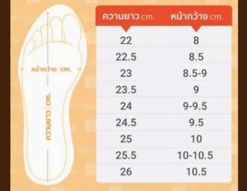 ขนาดไซส์ที่แตกต่างกันของทรงรองเท้า